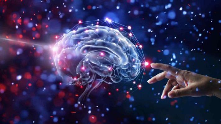 La Maravilla del Cerebro Humano